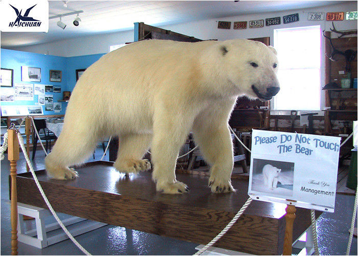 Realistic Animatronics Animals Models Lifelike Polar Bear Statues For Decoration